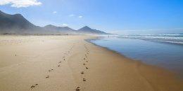 TENERIFA, Playa de las Americas